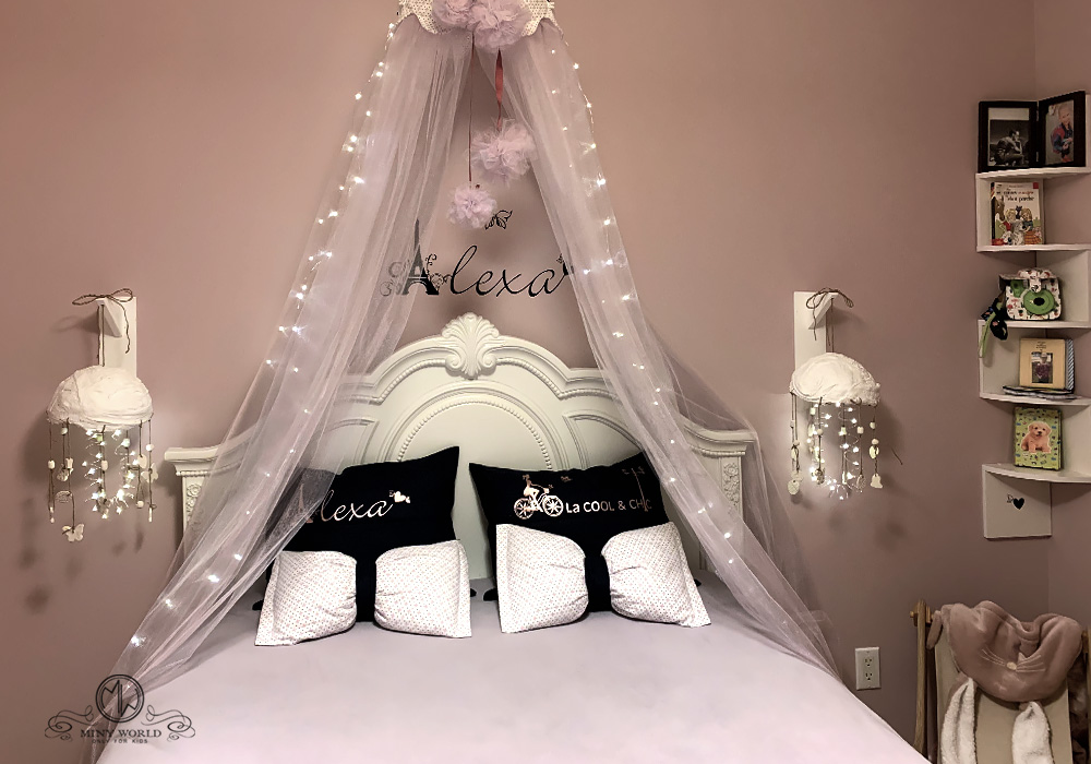 Girl Bedroom design and decor with Butterflies in Paris theme