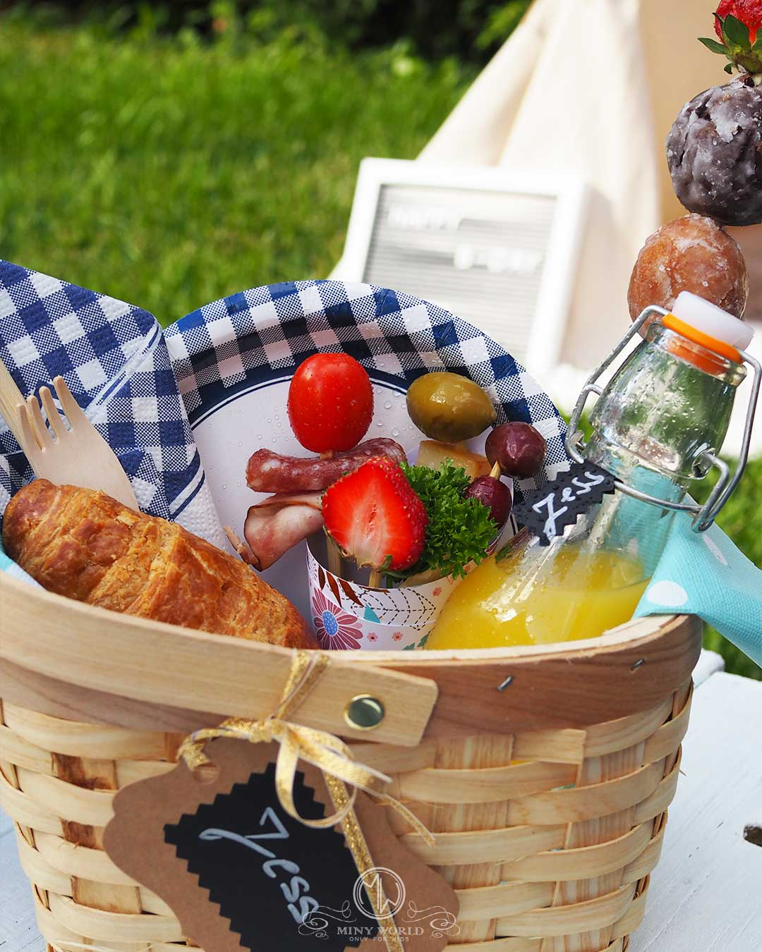 Kids_party_outdoor-picnic_13