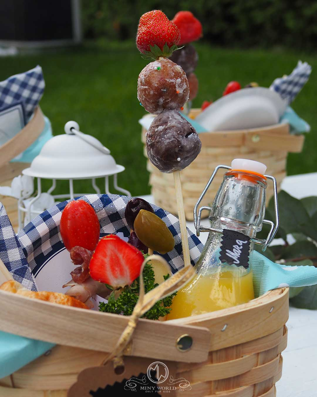 Kids_party_outdoor-picnic_14